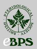 eBPS Logo